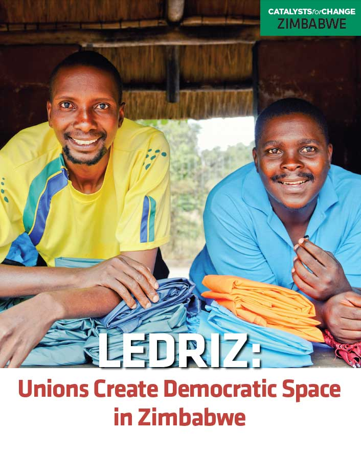 Unions Create Democratic Space in Zimbabwe (2013)