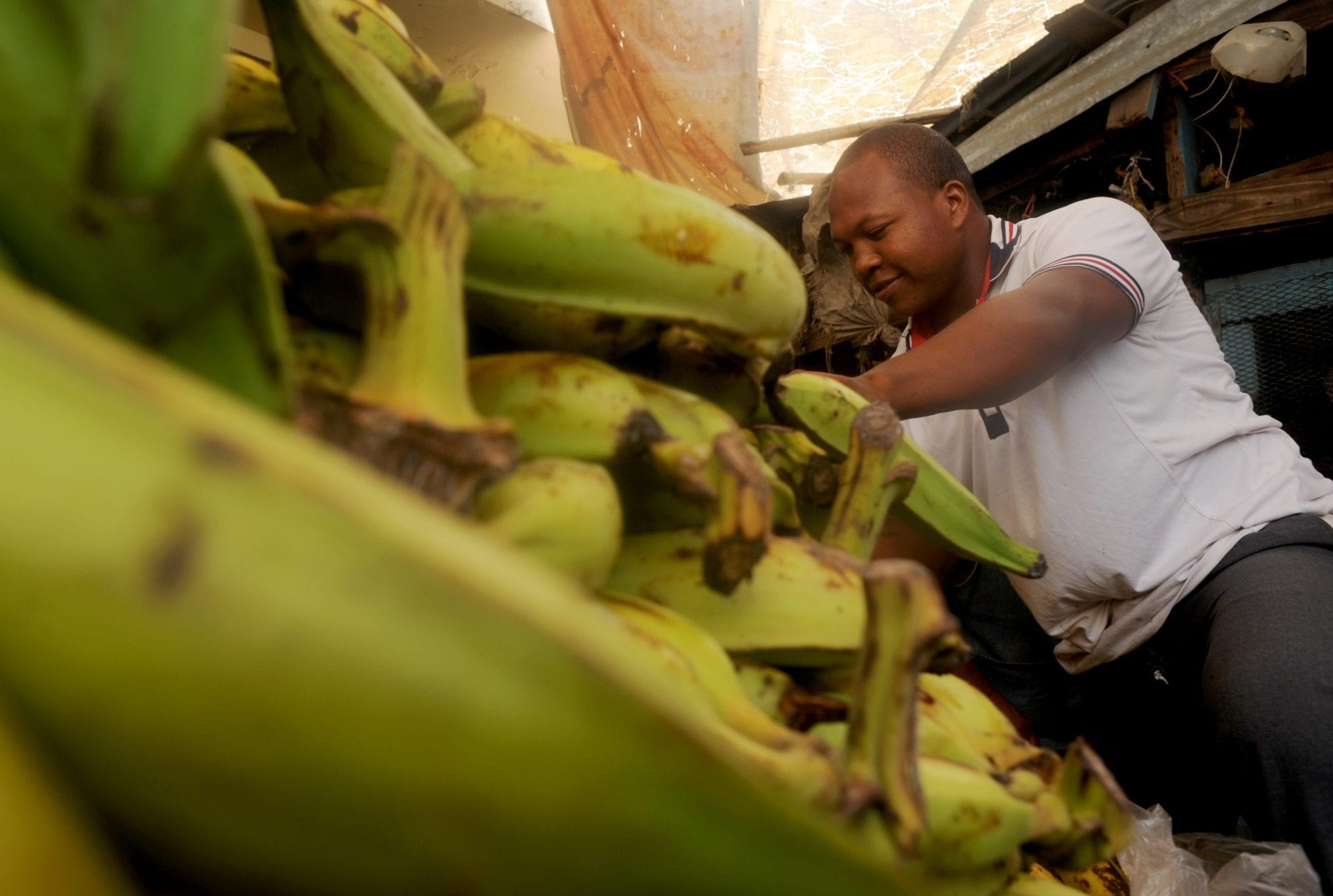 Solidarity Center, Dominican Republic, informal economy, unions, worker rights, plantains