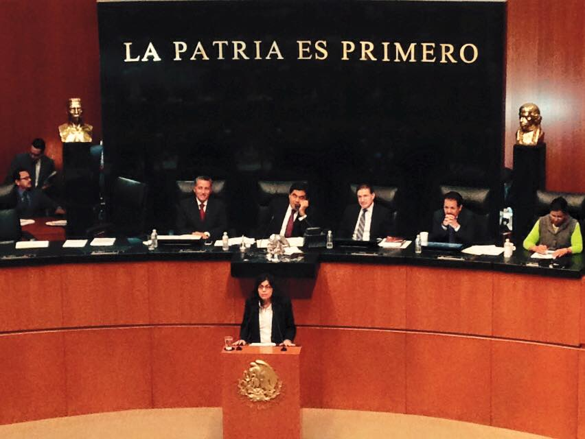 Mexican Senate Recognizes Human Rights Activist Ancheita