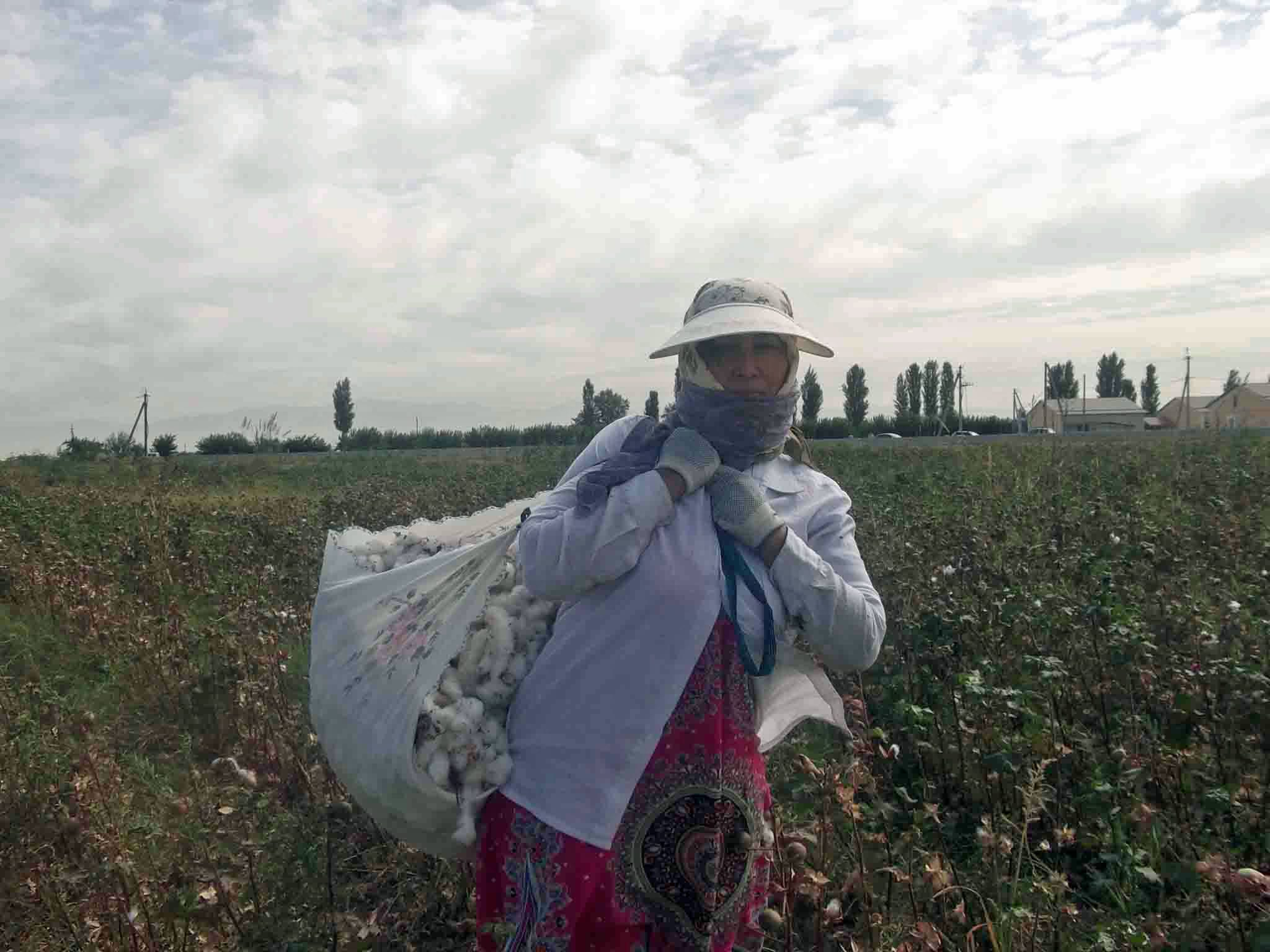 Ban Ki-moon: Uzbekistan Must Do More to End Forced Labor