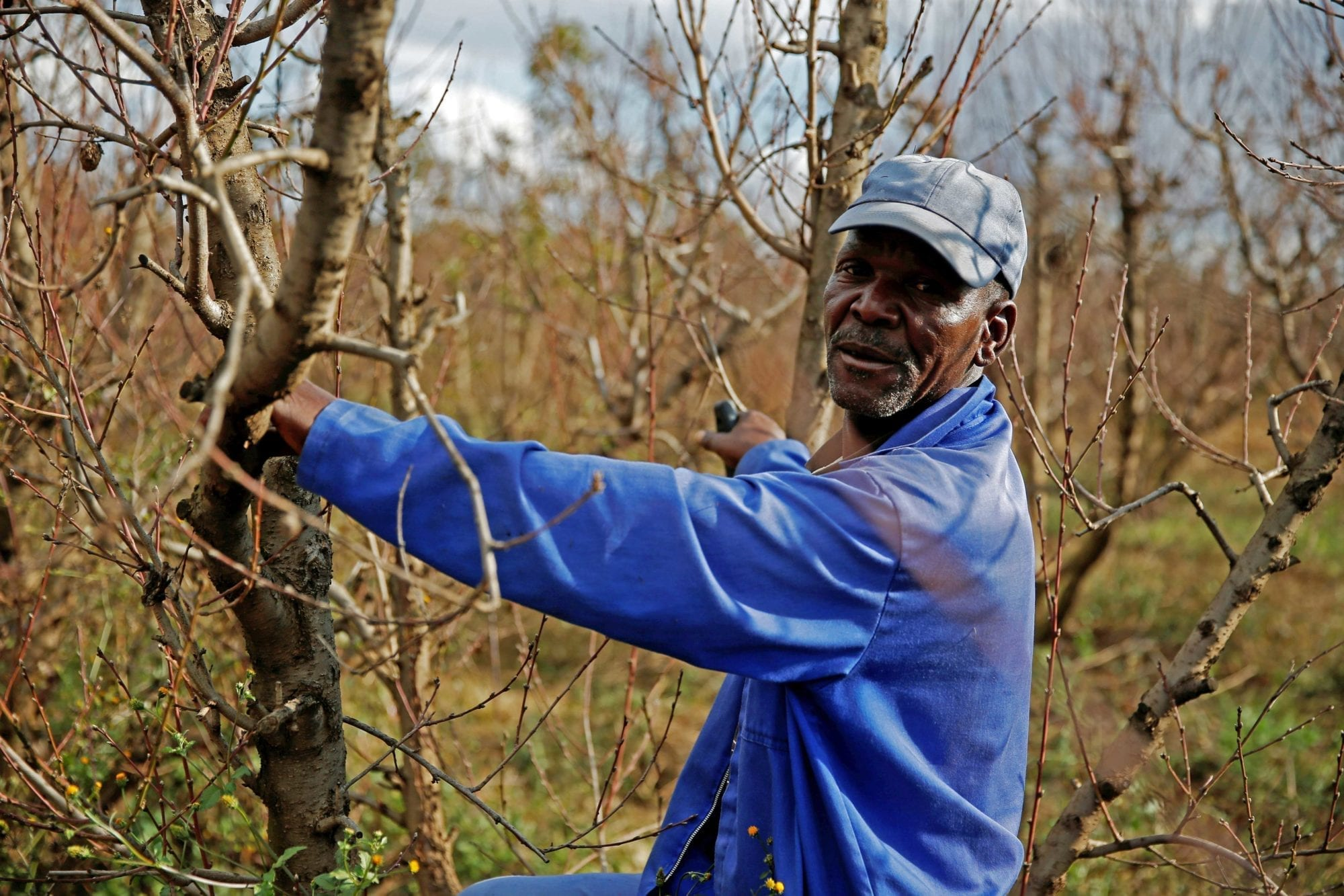 Farm Workers' Global Struggle for Rights on the Job