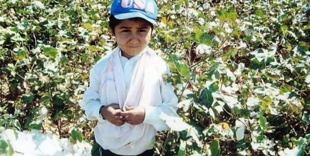 Uzbekistan, child labor, cotton harvest, Solidarity Center
