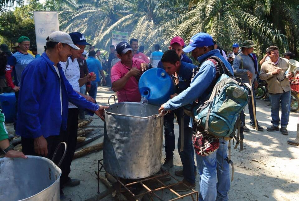 Palm Oil Workers Strike for Recognition as Employees