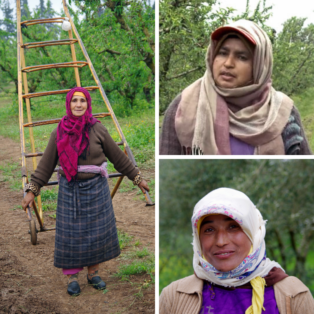 Morocco, farm workers, women, gender equality, Solidarity Center