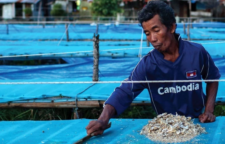 Thai fish processing, Cambodia, forced labor, human rights, Solidarity Center