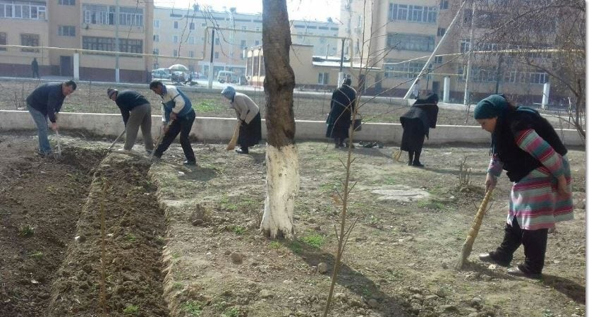 Report: Uzbek Teachers Clean Highways, Sweep Streets