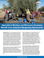 Morocco, agricultural workers, collective bargaining, unions, Solidarity Center