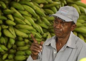 Juan Familia sells his plantains in the Municipal Market of San Cristobal, Dominican Republic Credit: Solidarity Center/Ricardo Rojas
