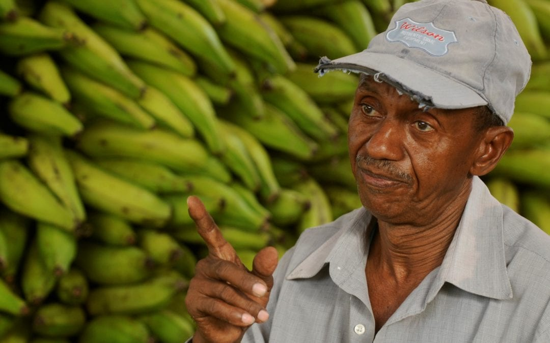 Juan Familia sells his plantains in the Municipal Market of San Cristobal, July 28, 2014. SOLIDARITY CENTER /Ricardo Rojas.(DOMINICAN REPUBLIC - Tags: BUSINESS EMPLOYMENT SOCIETY MARKET )