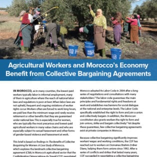 Agricultural Workers and Morocco's Economy Benefit from Collective Bargaining Agreements
