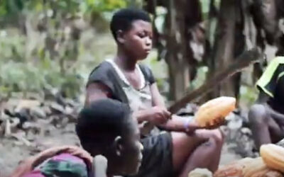 Girl using machete on cocoa pod in a video about how a Ghana agricultural union is helping children leave cocoa production for school