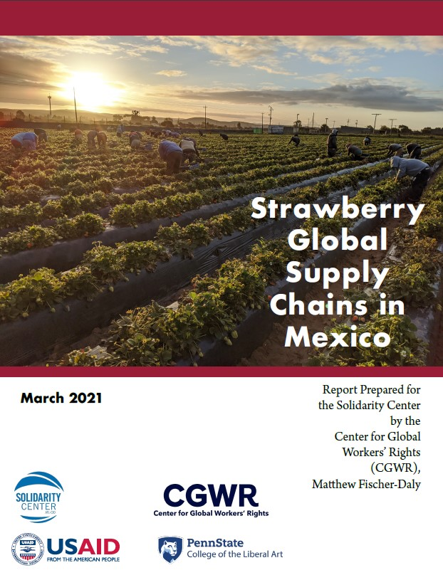 Strawberry Global Supply Chains in Mexico
